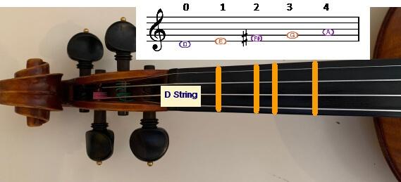d-string-img